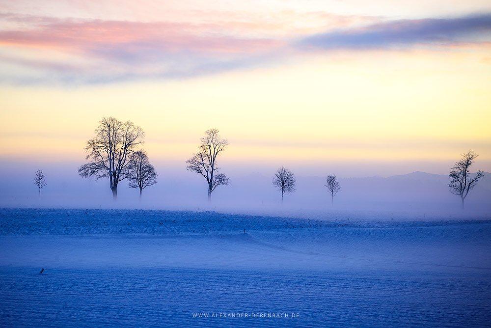 morning-fog.jpg